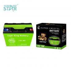 LIGER KING 12V 100W 6.65kg-6.7kg Storage Battery 18*7.7*16.8cm with Black Cover Green Shell