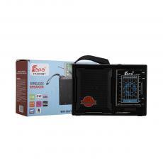 FP-9019BT  Radio  Color Box  FM/AM/SW1-7 9/USB/TF/MP3/BT/AUX  18*12.4*6.4cm