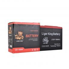 Battery  Color Box  12V100AH  6.65kg  18*7.7*16.8cm