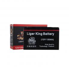 Tianneng Black Crystal Old Battery  Color Box  10.2kg  26.7*7.7*17cm