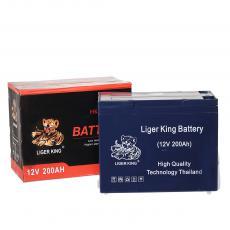 LIGER KING Good Price Deepcycle Storage Battery 12V 55Ah for Solar Lighting 22.3*12*17.5cm